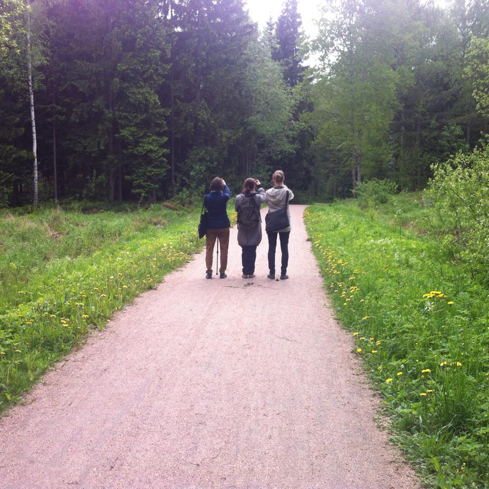 walk_2.jpg